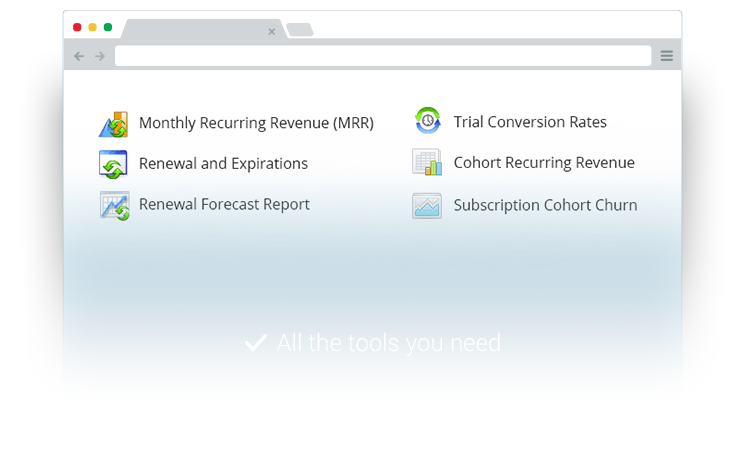 Keep track of your recurring revenue growth and trends using our insightful tools