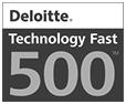 Avangate award for Deloitte Tech Fast 500
